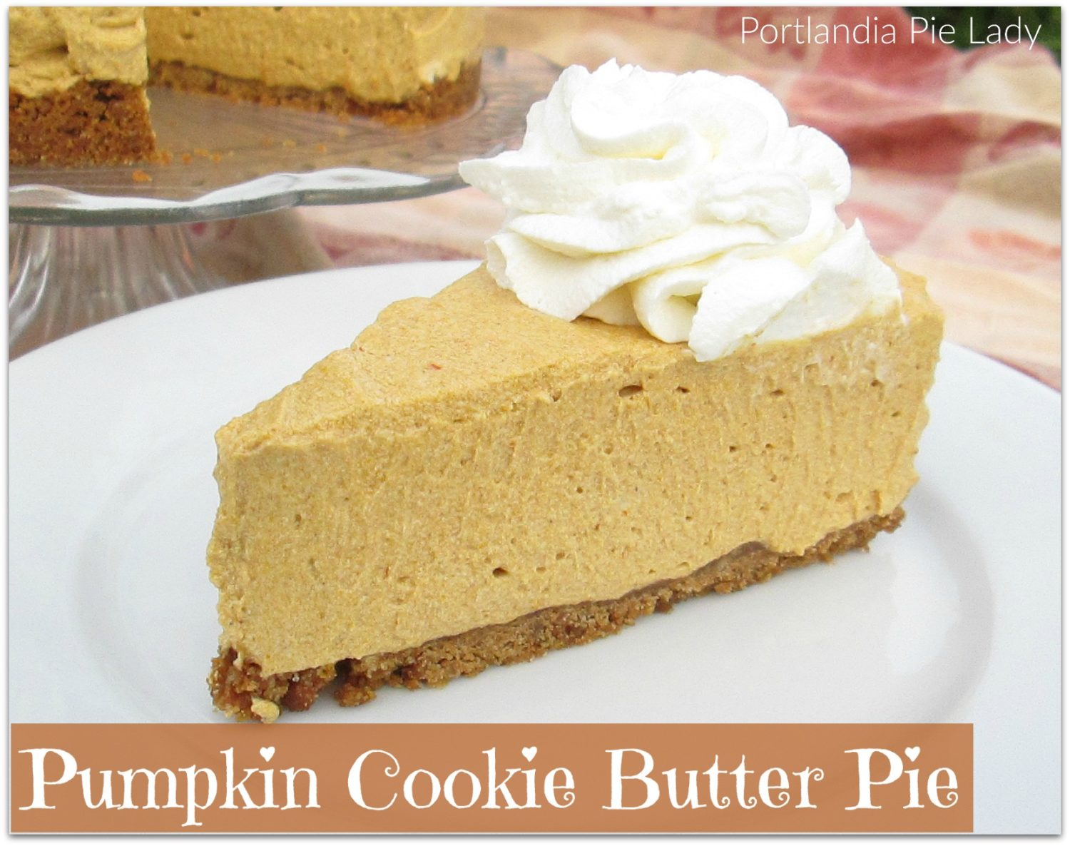 Pumpkin Cookie Butter Pie is spicy, creamy, and decadent with a healthy amount of rich cookie butter, all held together with a gingersnap cookie crust.